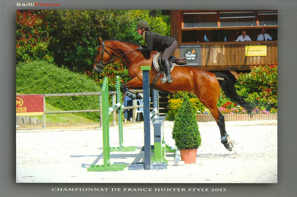 claire lhuillier hunter equitation